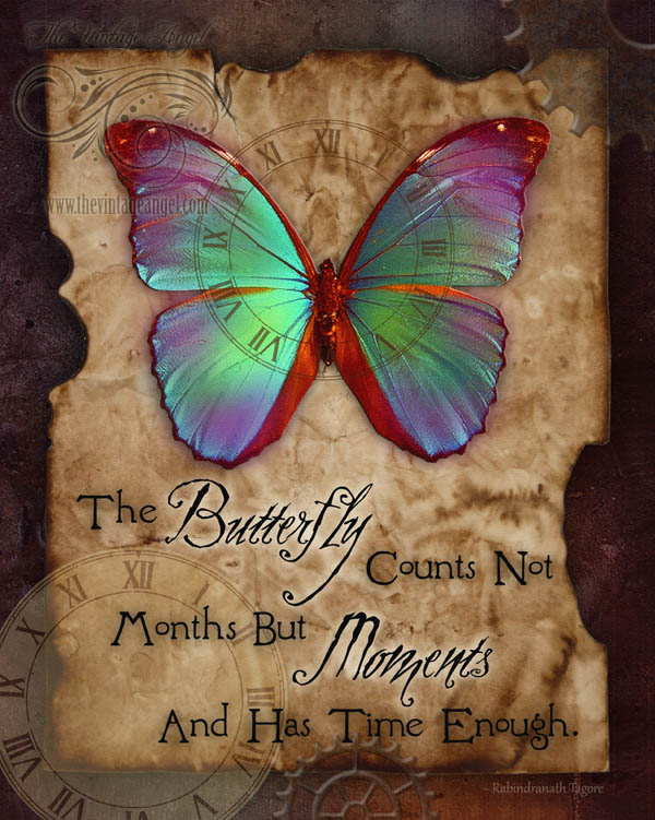 Butterfly Moments Print