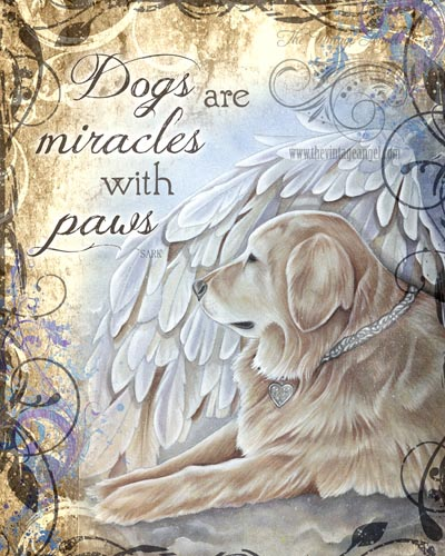 Dogs Are Miracles Print